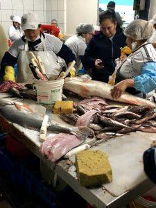 Peru fish market